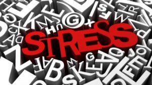 stress beratung