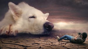 Ängste Hundephobie